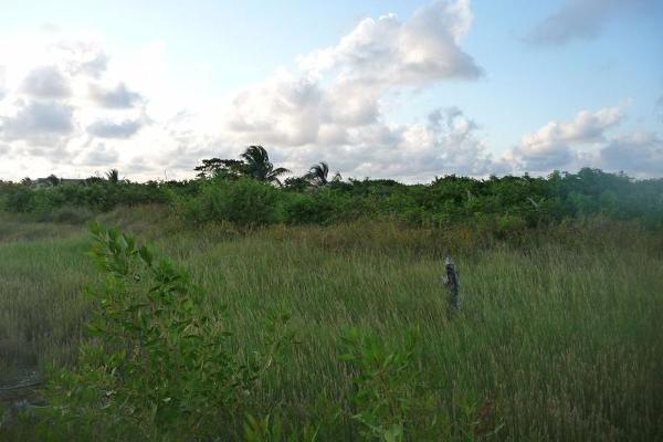 Foto de terreno habitacional en venta en  , san andres tuxtla centro, san andrés tuxtla, veracruz de ignacio de la llave, 7858326 No. 03