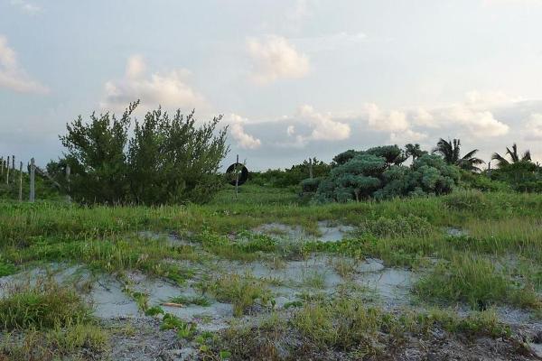 Foto de terreno habitacional en venta en  , san andres tuxtla centro, san andrés tuxtla, veracruz de ignacio de la llave, 7858326 No. 07