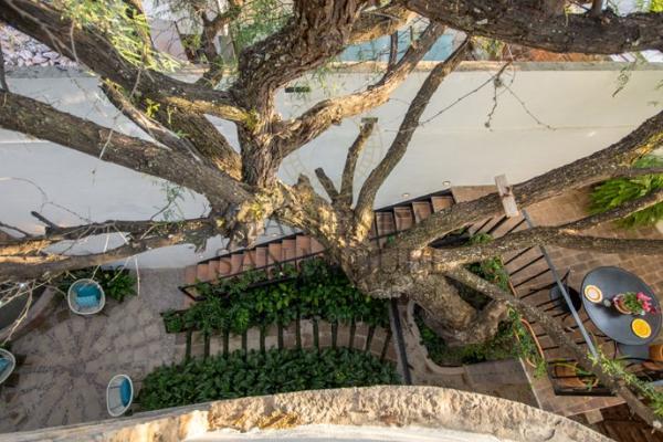 Foto de casa en venta en  , san antonio, san miguel de allende, guanajuato, 8398238 No. 14
