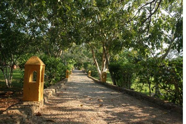 Foto de rancho en venta en  , san antonio tehuitz, kanasín, yucatán, 14028223 No. 04