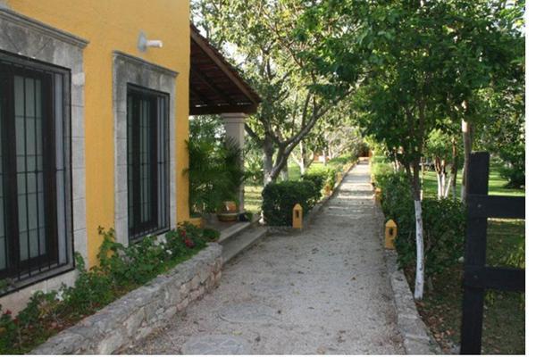 Foto de rancho en venta en  , san antonio tehuitz, kanasín, yucatán, 14028223 No. 05