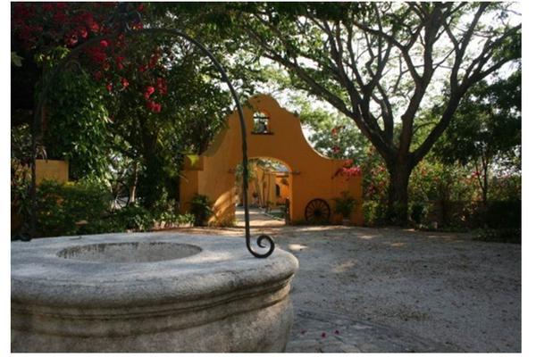 Foto de rancho en venta en  , san antonio tehuitz, kanasín, yucatán, 14028223 No. 07