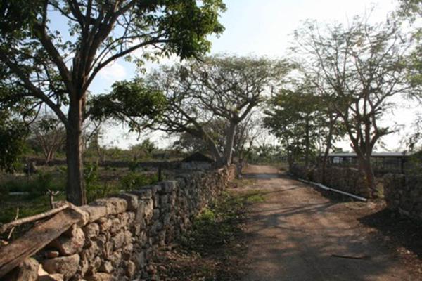 Foto de rancho en venta en  , san antonio tehuitz, kanasín, yucatán, 14028223 No. 19