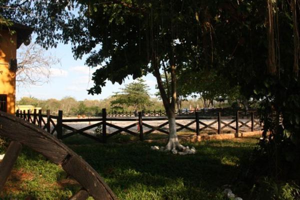Foto de rancho en venta en  , san antonio tehuitz, kanasín, yucatán, 14028223 No. 22