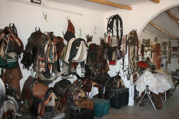 Foto de rancho en venta en  , san antonio tehuitz, kanasín, yucatán, 14028223 No. 24