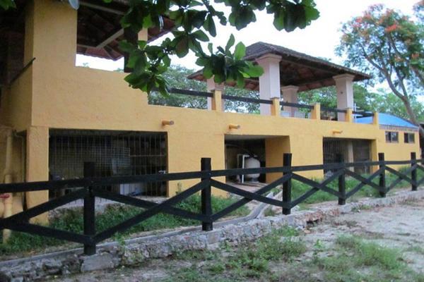 Foto de rancho en venta en  , san antonio tehuitz, kanasín, yucatán, 14028223 No. 36
