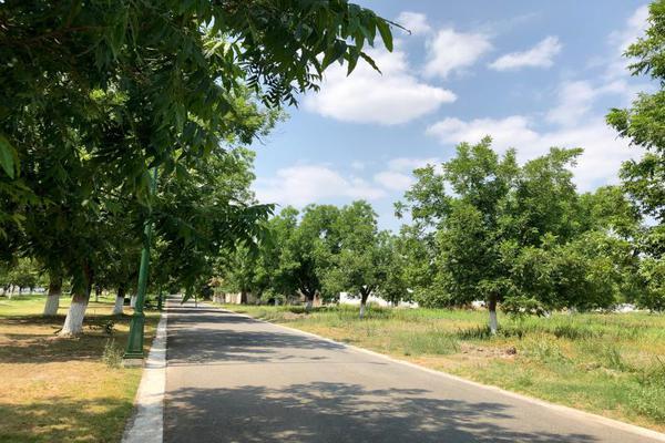 Foto de terreno habitacional en venta en  , san armando, torreón, coahuila de zaragoza, 7267186 No. 05
