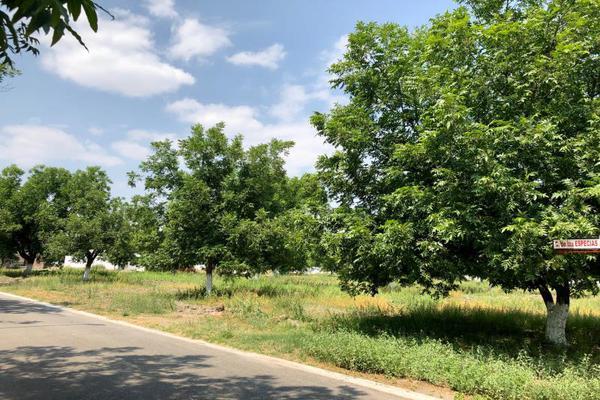 Foto de terreno habitacional en venta en  , san armando, torreón, coahuila de zaragoza, 7267186 No. 06