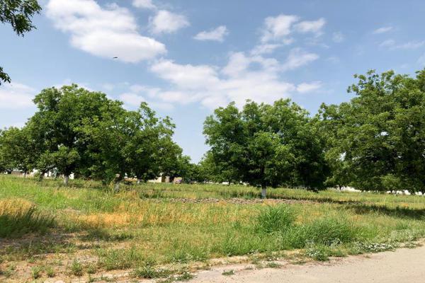 Foto de terreno habitacional en venta en  , san armando, torreón, coahuila de zaragoza, 7267186 No. 08