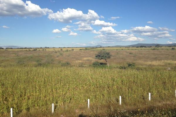 Foto de terreno habitacional en venta en  , san bartolomé de agua caliente (san bartolo), apaseo el alto, guanajuato, 2718866 No. 03