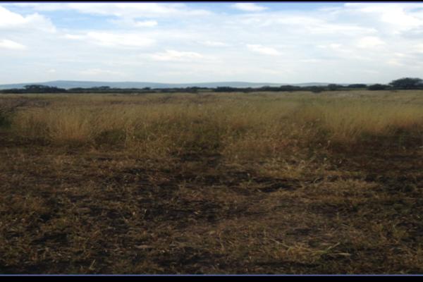 Foto de terreno habitacional en venta en  , san bartolomé de agua caliente (san bartolo), apaseo el alto, guanajuato, 2718866 No. 06