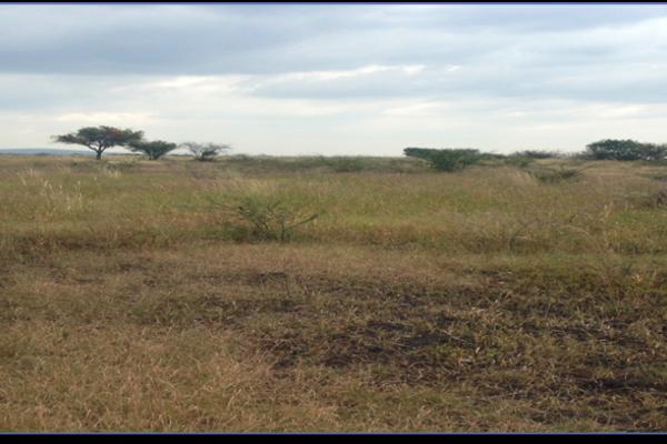 Foto de terreno habitacional en venta en  , san bartolomé de agua caliente (san bartolo), apaseo el alto, guanajuato, 2718866 No. 07