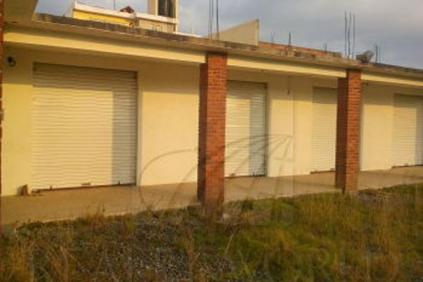 Foto de local en renta en  , san bartolom? tlaltelulco, metepec, m?xico, 3099131 No. 09