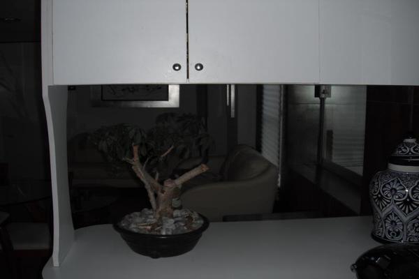 Foto de departamento en venta en san bernardino 1, del valle norte, benito juárez, df / cdmx, 20406020 No. 02