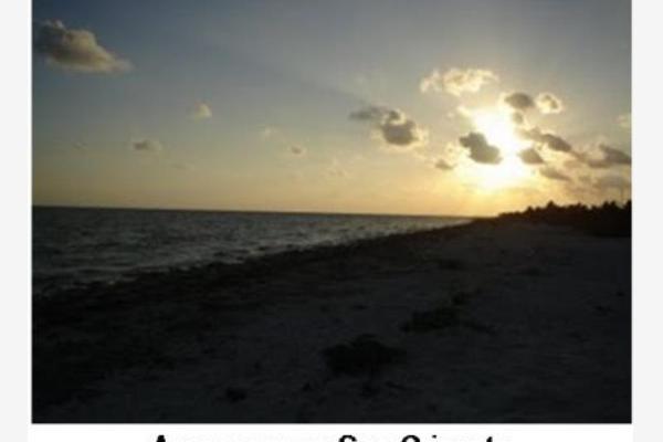 Foto de terreno habitacional en venta en  , san crisanto, sinanché, yucatán, 2706787 No. 07