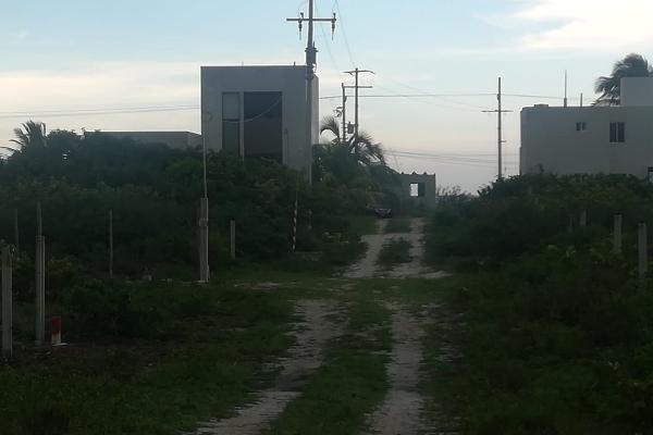 Foto de terreno habitacional en venta en  , san diego, dzemul, yucatán, 14038569 No. 03