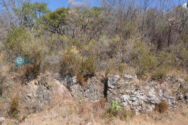 Foto de terreno habitacional en venta en  , san diego, ixtapan de la sal, méxico, 5934654 No. 04