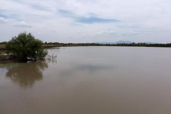 Foto de rancho en venta en san felipe 00, querétaro, querétaro, querétaro, 8395353 No. 03
