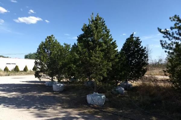 Foto de rancho en venta en san felipe 00, querétaro, querétaro, querétaro, 8395353 No. 04
