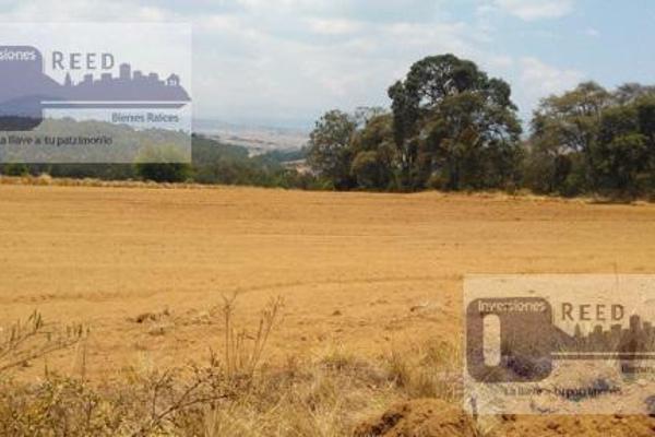 Foto de casa en venta en  , san felipe del progreso centro, san felipe del progreso, méxico, 7220399 No. 04