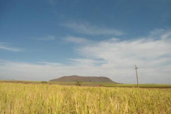 Foto de terreno habitacional en venta en  , san fernando, tepic, nayarit, 2689351 No. 01
