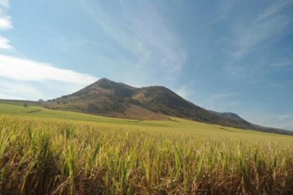 Foto de terreno habitacional en venta en  , san fernando, tepic, nayarit, 2689351 No. 02