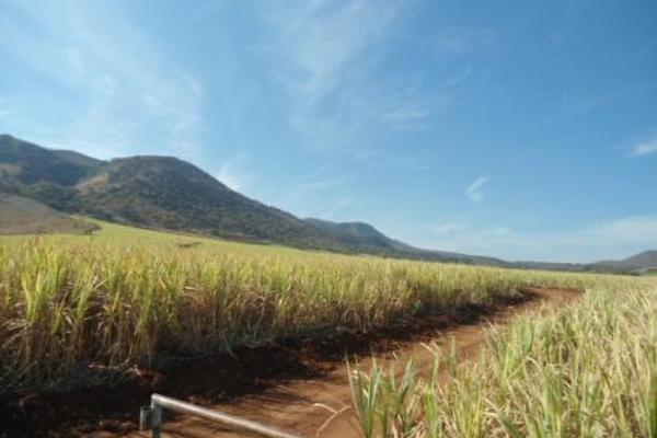 Foto de terreno habitacional en venta en  , san fernando, tepic, nayarit, 2689351 No. 06