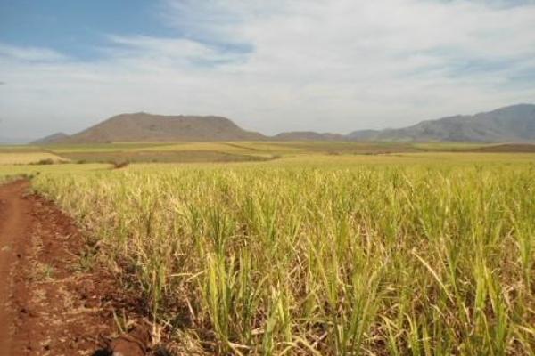 Foto de terreno habitacional en venta en  , san fernando, tepic, nayarit, 2689351 No. 09