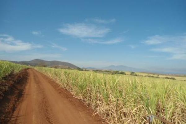 Foto de terreno habitacional en venta en  , san fernando, tepic, nayarit, 2689351 No. 12