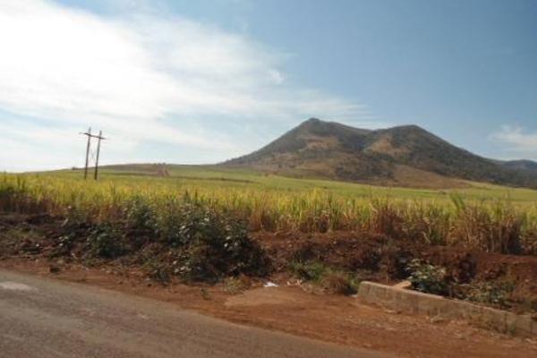 Foto de terreno habitacional en venta en  , san fernando, tepic, nayarit, 2689351 No. 13