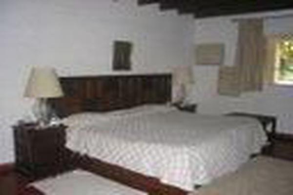 Foto de rancho en venta en san francisco de las luciernagas 0, potrero de la sierra, villa guerrero, méxico, 7224721 No. 07