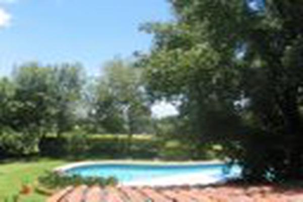 Foto de rancho en venta en san francisco de las luciernagas 0, potrero de la sierra, villa guerrero, méxico, 7224721 No. 09