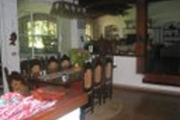 Foto de rancho en venta en san francisco de las luciernagas 20, potrero de la sierra, villa guerrero, méxico, 7224721 No. 06