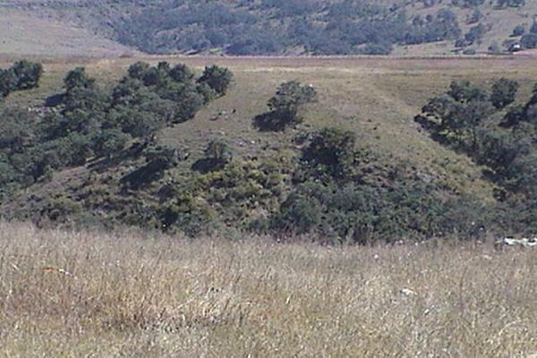 Foto de terreno comercial en venta en  , san francisco magu, nicolás romero, méxico, 5876131 No. 02
