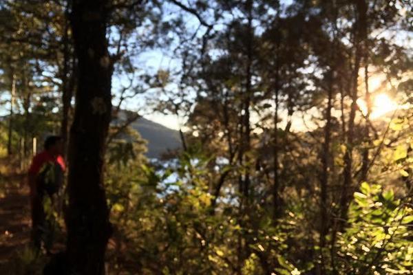 Foto de terreno habitacional en venta en carretera a colorines , san gaspar, valle de bravo, méxico, 2727628 No. 04