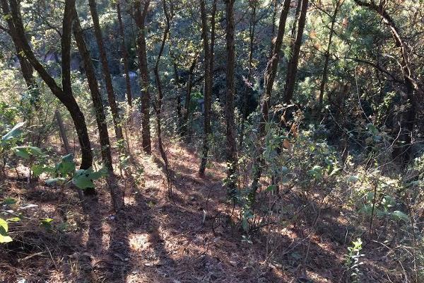 Foto de terreno habitacional en venta en carretera a colorines , san gaspar, valle de bravo, méxico, 2727628 No. 05