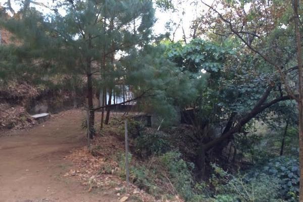 Foto de terreno habitacional en venta en carretera a colorines , san gaspar, valle de bravo, méxico, 2727628 No. 06