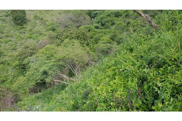 Foto de terreno habitacional en venta en  , san gaspar, valle de bravo, méxico, 9305092 No. 08