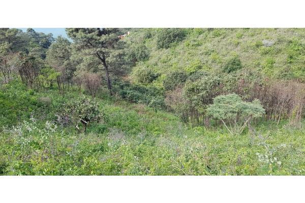 Foto de terreno habitacional en venta en  , san gaspar, valle de bravo, méxico, 9305092 No. 09