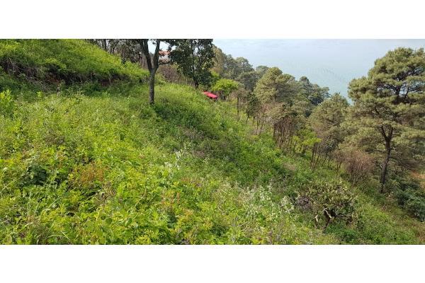 Foto de terreno habitacional en venta en  , san gaspar, valle de bravo, méxico, 9305092 No. 10