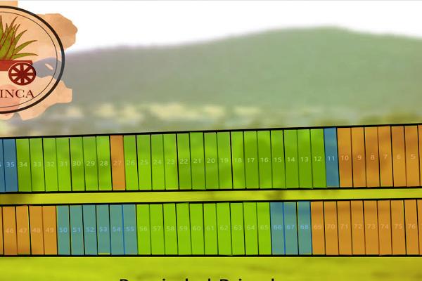 Foto de terreno habitacional en venta en  , san ignacio, progreso, yucatán, 14026078 No. 06