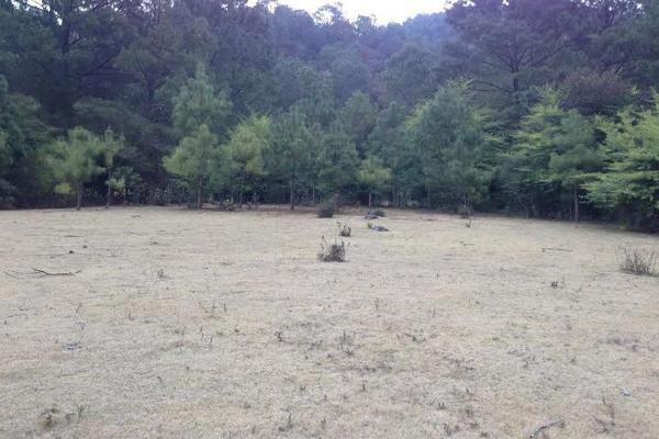 Foto de terreno habitacional en venta en san isidro 0, corral de piedra, san cristóbal de las casas, chiapas, 2648371 No. 07