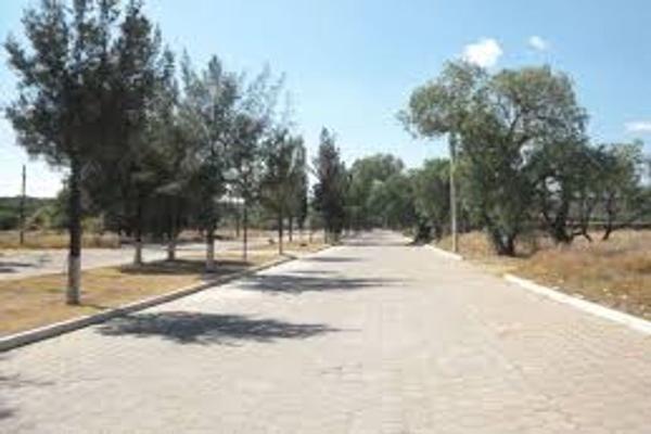 Foto de terreno habitacional en venta en san isidro , amazcala, el marqués, querétaro, 9149297 No. 03