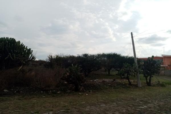 Foto de terreno habitacional en venta en san isidro , amazcala, el marqués, querétaro, 9149297 No. 08
