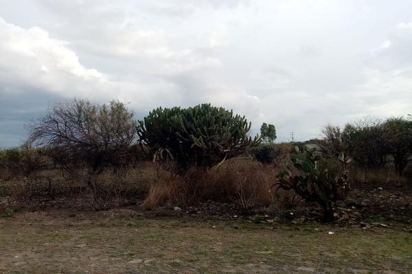 Foto de terreno habitacional en venta en san isidro , amazcala, el marqués, querétaro, 9149297 No. 10