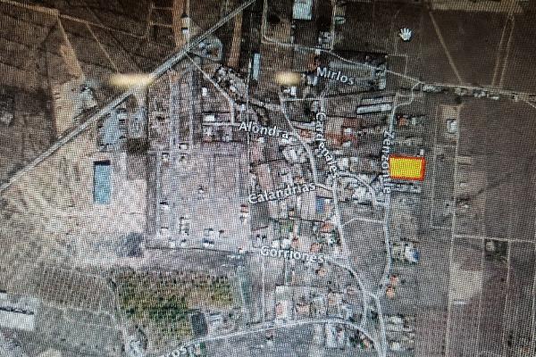 Foto de terreno habitacional en venta en  , san isidro de las palomas, arteaga, coahuila de zaragoza, 12843864 No. 01