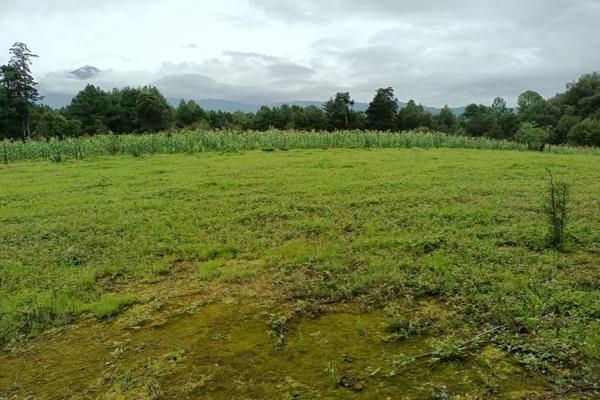 Foto de terreno habitacional en venta en  , san jacinto, atlautla, méxico, 14374200 No. 12