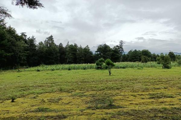 Foto de terreno habitacional en venta en  , san jacinto, atlautla, méxico, 14374200 No. 13