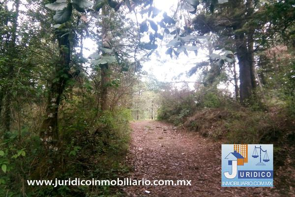 Foto de terreno habitacional en venta en  , san jacinto, atlautla, méxico, 14374200 No. 17
