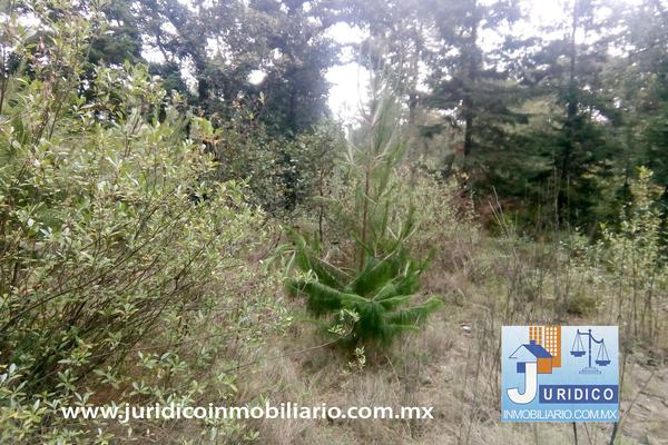 Foto de terreno habitacional en venta en  , san jacinto, atlautla, méxico, 14374200 No. 18